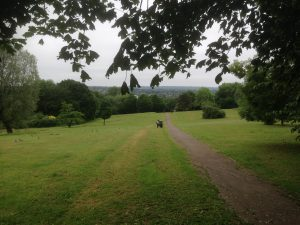 Bittacy Hill Park, Mill Hill 3
