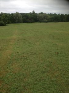 Brook Farm Open Space, Totteridge 7