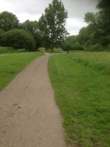 Brook Farm Open Space, Totteridge 1