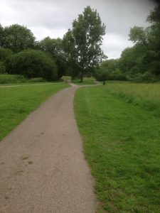 Brook Farm Open Space, Totteridge 8