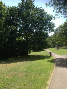 Dollis Valley Greenwalk, Woodside Park 5