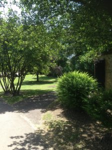 Dollis Valley Greenwalk, Woodside Park 4