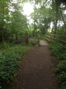 Darlands Lake Nature Reserve, Mill Hill and Totteridge 9