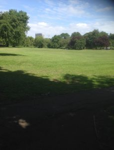 Swan Lane Open Space, Woodside Park 5