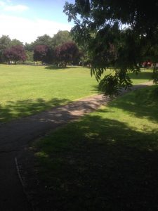 Swan Lane Open Space, Woodside Park 6