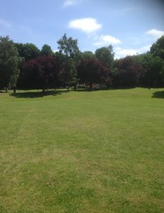 Swan Lane Open Space, Woodside Park 8
