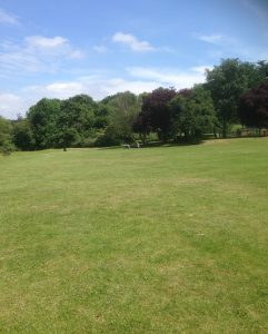 Swan Lane Open Space, Woodside Park 9