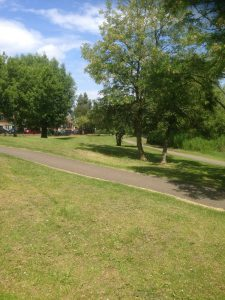 Swan Lane Open Space, Woodside Park 14