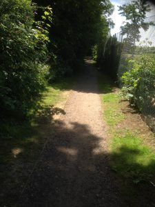 Dollis Valley Greenwalk, Woodside Park 7