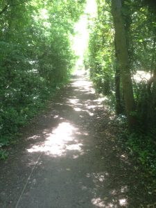 Dollis Valley Greenwalk, Woodside Park 12