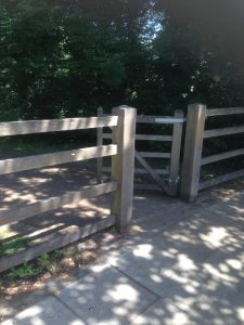 Dollis Valley Greenwalk, Woodside Park 19