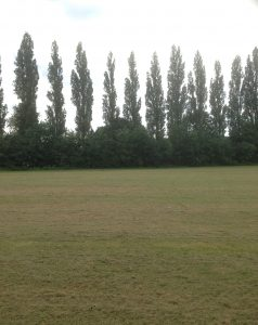Barnet Playing Fields and King George V Playing Fields, Barnet 6