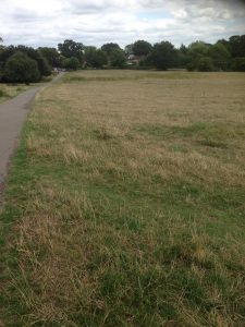 Bentley Priory Open Space, Stanmore 13