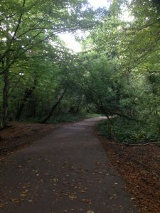 Bentley Priory Open Space, Stanmore 12