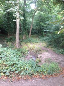 Bentley Priory Open Space, Stanmore 8